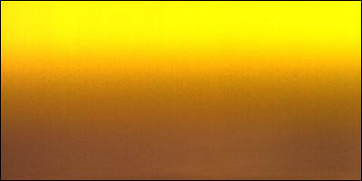 Graduated Gradient Rainbow Vinyl Vertical Yellow To